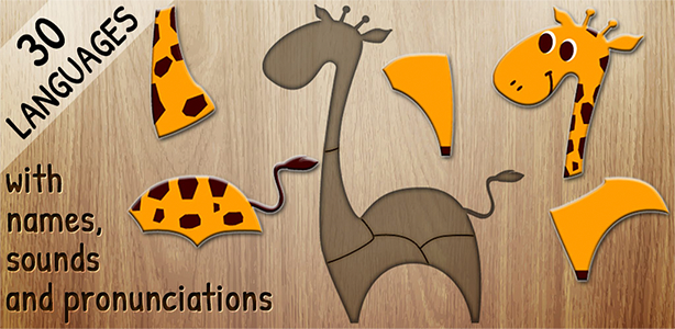 Image For: 384 Puzzles for Preschool Kids